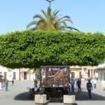kalabrien bild 571 150x150 - Kalabrien Bilder Galerie